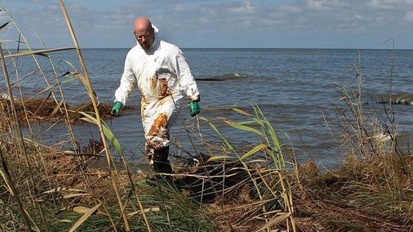 """Ölpest im Golf von Mexiko: """"BP und Weißes Haus vertuschen"""""""