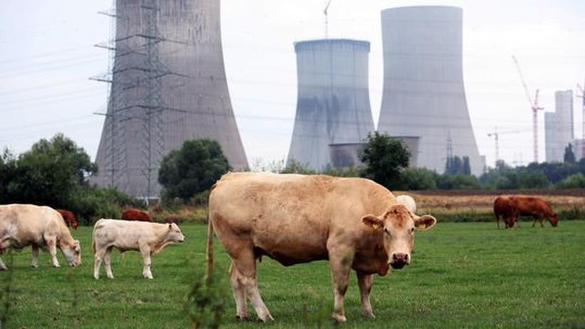 Energiekonzept: Atomstreit sorgt für ungewöhnliche Bündnisse