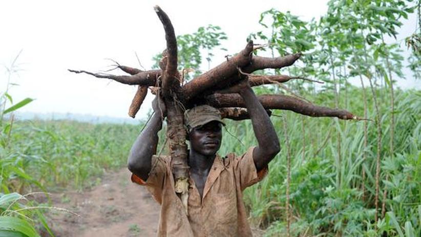 Landkauf: Wie sich reiche Investoren in armen Ländern Flächen sichern