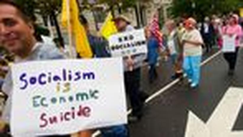 Wahl in den USA: Die großen Brüder der Tea Party