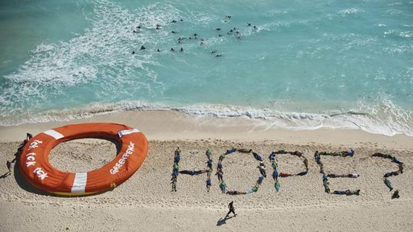 Umweltpolitik 2010: Umweltaktivisten am Rande des Klimagipfels in Cancún