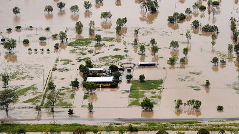 Australiens Flut: Weizen wird kostbar