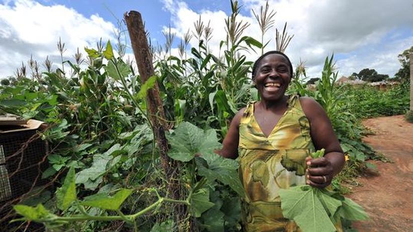 Welternährung: Die Diskriminierung von Frauen verstärkt den Hunger