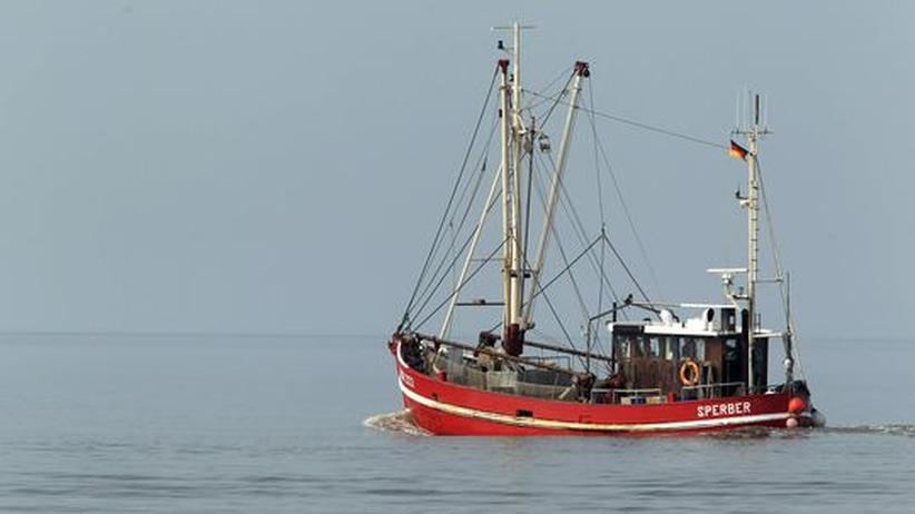 Fischerboot in der Nordsee