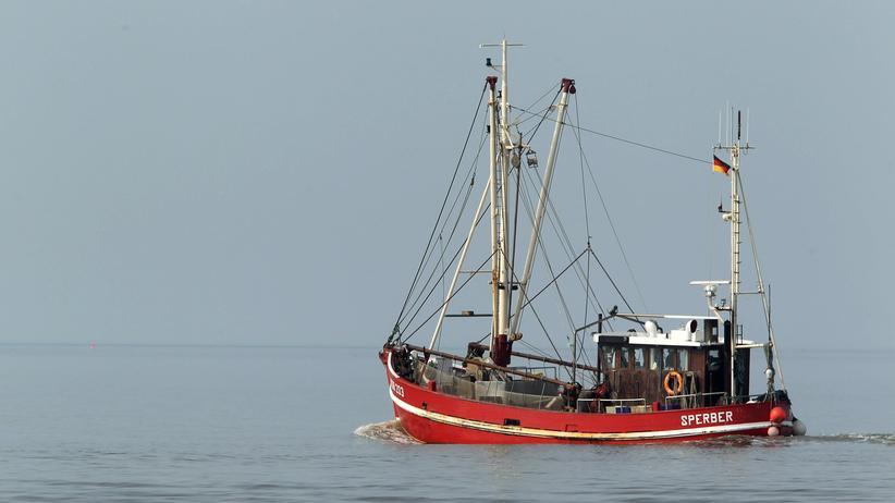 Fischereipolitik: Neue Kommissarin räumt die Meere auf