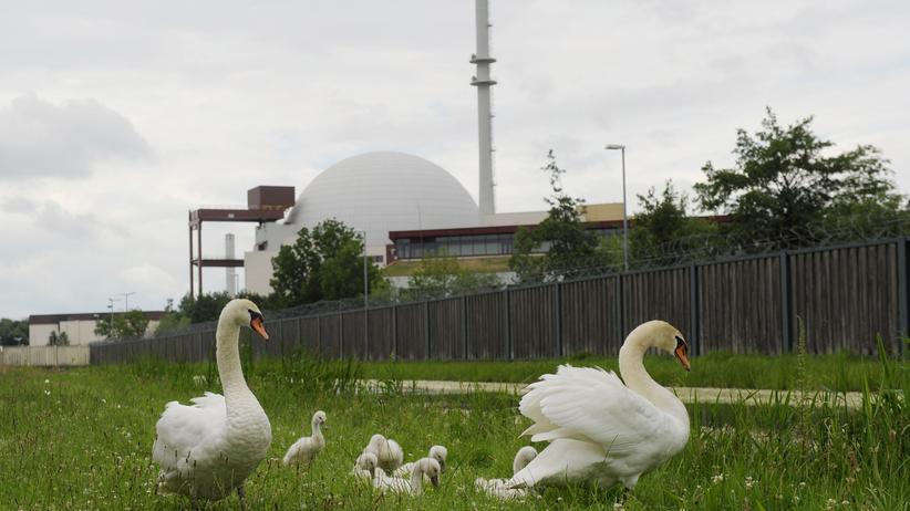 Atomausstieg: Wir müssen mehr Energie sparen!
