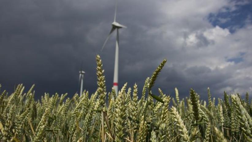 Erneuerbare Energien: Windradflügel fürs Zementwerk
