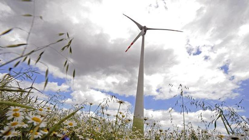 Energiewende: Monopolkommission verlangt Systemwechsel beim Ökostrom