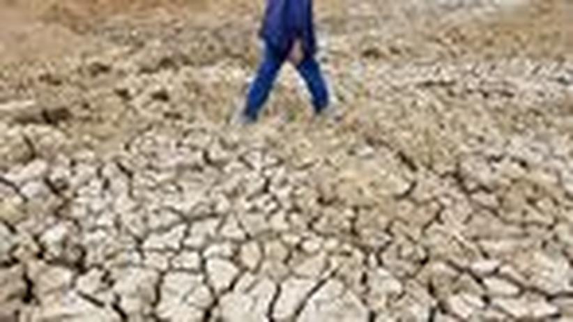 UN-Bericht: Knapperes Ackerland, mehr Hunger
