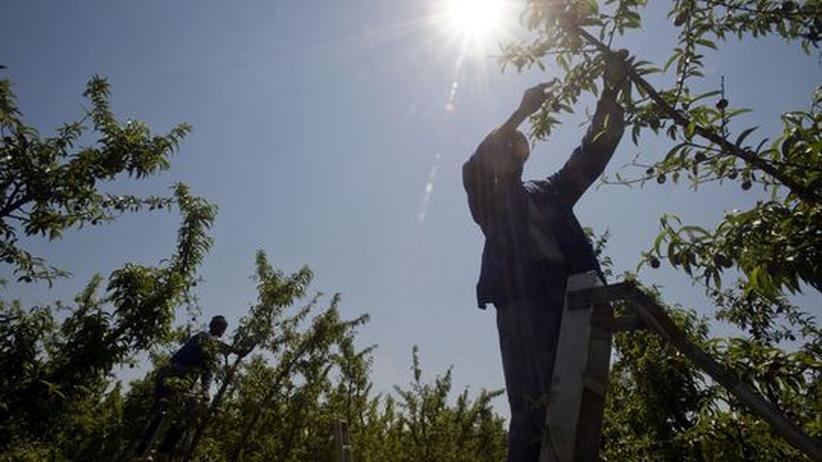 Rohstoffe: Südafrika fürchtet den Wassermangel