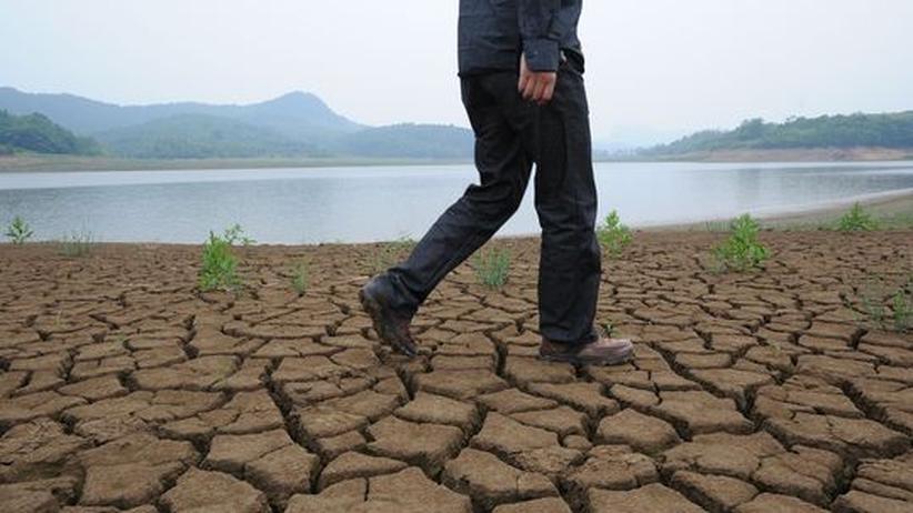 Ein Mann läuft am Ufer des ausgetrockneten Jangtsekiang in China entlang.