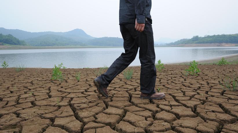 Erderwärmung: Nur Unvernünftige zweifeln noch am Klimawandel