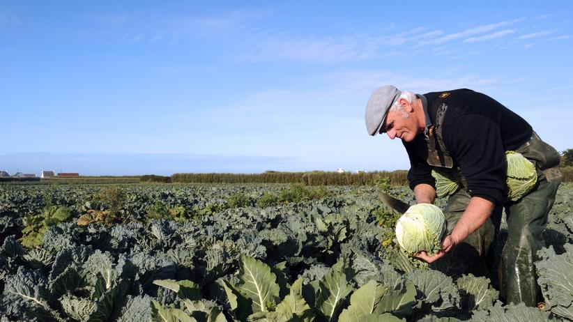Agrarreform: Ende der Agrar-Kungelei