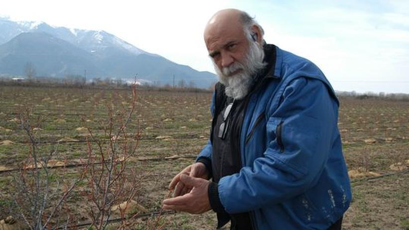 Nikolaos Papoutsis
