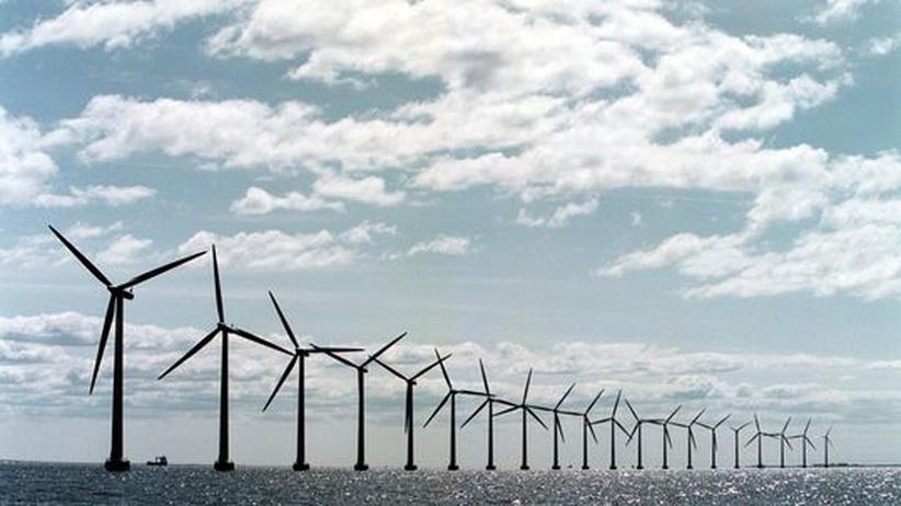 Offshore-Wind: Holländischer Netzbetreiber hemmt deutsche Energiewende