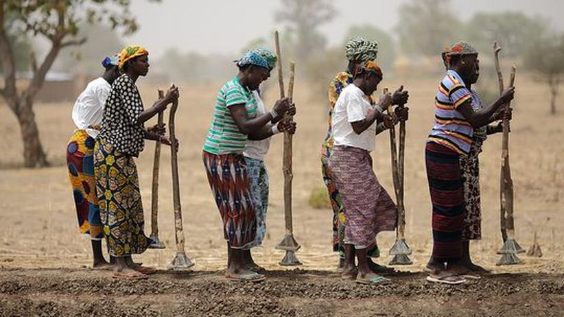 Agrar-Spekulation: Frauen arbeiten auf einem Feld in Burkina Faso, 300 Kilometer nördlich der Hauptstadt Ouagadougou.