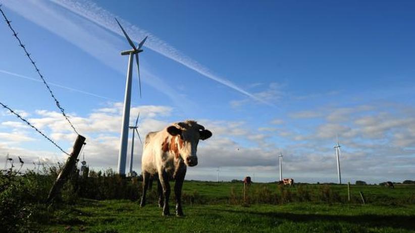 Schleswig-Holstein: Sag' bloß nichts gegen Windräder