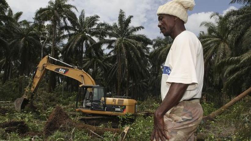 Biotreibstoffe: Ein Arbeiter vor einem Bagger, der Land für eine Ölplantage im südlichen Sierra Leone vorbereitet (Archivbild)