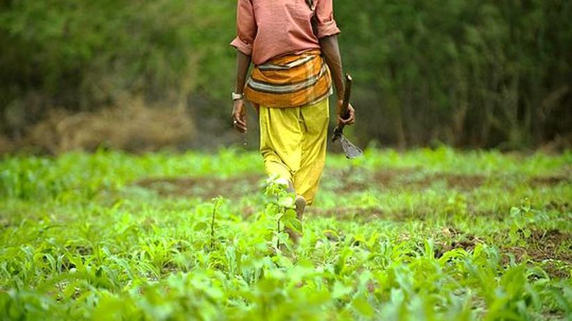 Gegen Landraub: Oxfam kritisiert Landprojekte der Weltbank