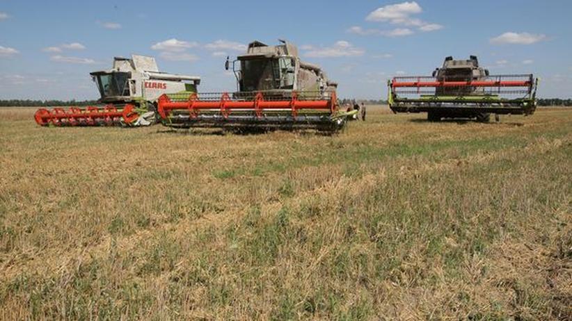 Ackerland: Getreideernte in der Ukraine (Archivbild)