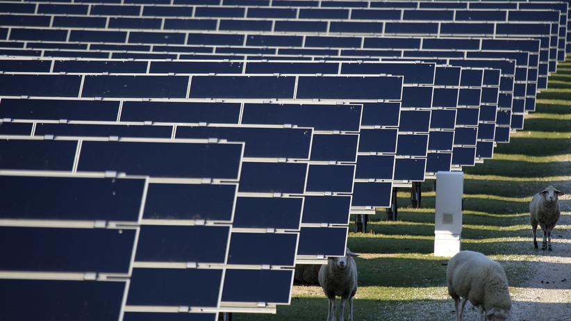 Eine Solaranlage südlich von Karlsruhe