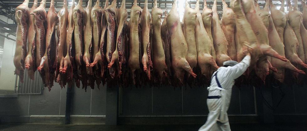 Fleischwirtschaft: Die Schlachtordnung