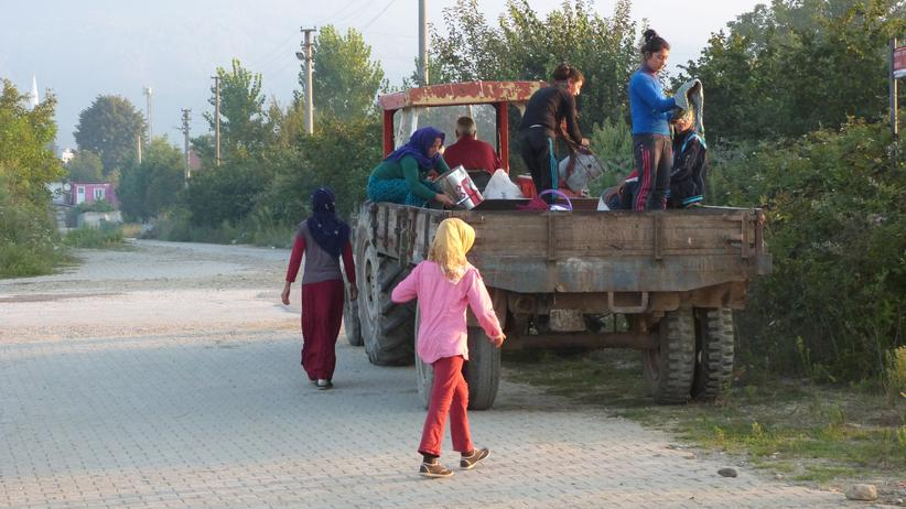 Türkei: Wanderarbeiter werden in der Türkei zur Arbeit abgeholt