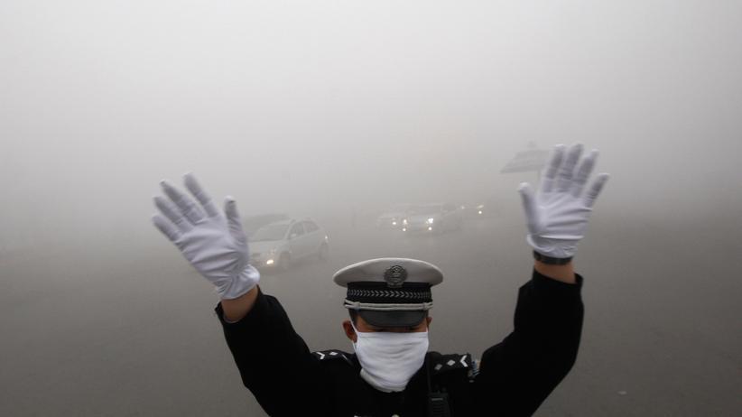 Wirtschaft, Klimawandel, Klimakonferenz, Klimapolitik, Klimawandel, Luftverschmutzung, Kohle, China