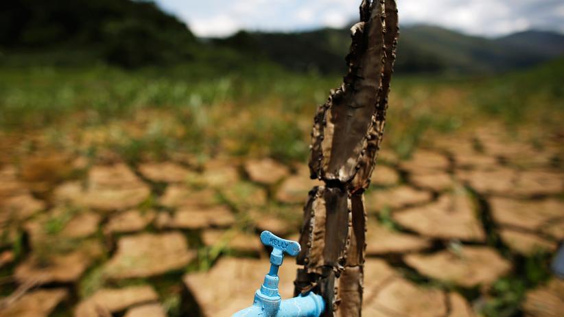 """UN-Bericht: Installation """"Desert of Cantareira"""" des brasilianischen Künstlers und Aktivisten Mundano: Die Vereinten Nationen warnen vor Trinkwassermangel in warmen Ländern."""