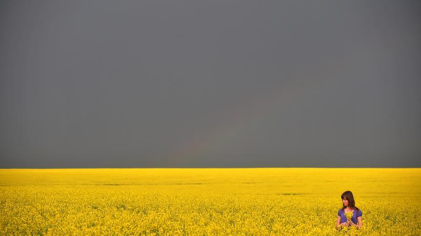 Landwirtschaft in der Ukraine: Idylle vor dem Gewittersturm: Eine Frau pflückt Blüten aus einem Rapsfeld in der Ukraine, etwa 300 Kilometer von Kiew entfernt (Archivbild).