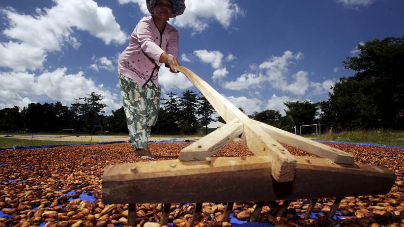 Wirtschaft, Schokolade, Fairtrade-Siegel, Kakao, Agrarmarkt, Rohstoffe, Börsenspekulation