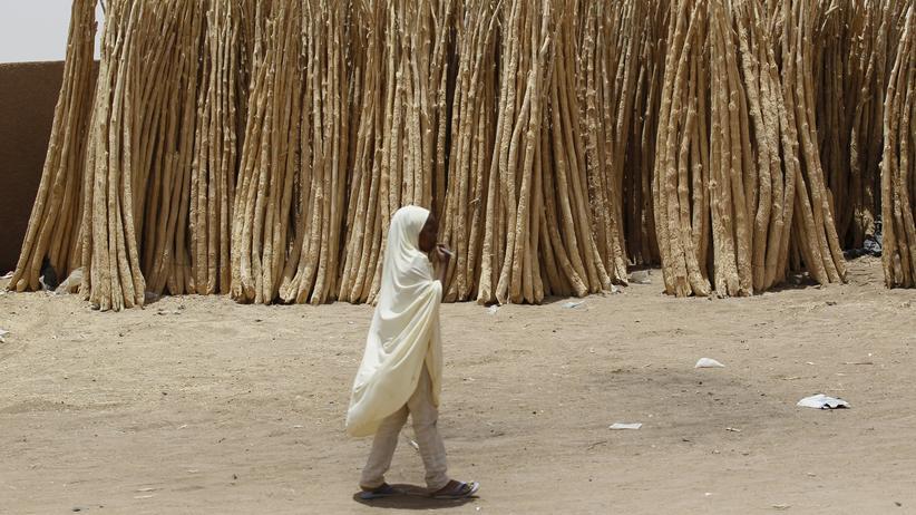 Wirtschaft, Kinderhandel, Benin, Kinder, Menschenhandel, Drogenhandel, Waffenhandel, Afrika
