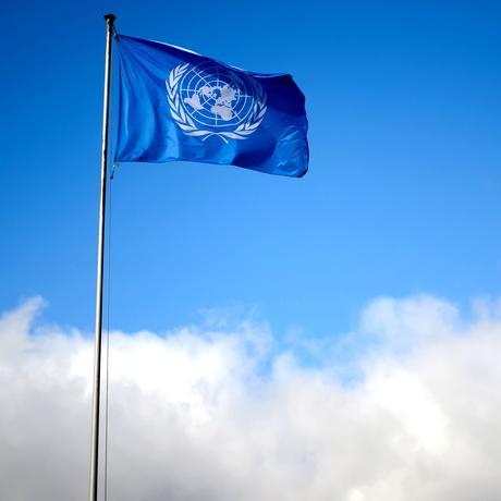 Die Vereinten Nationen
