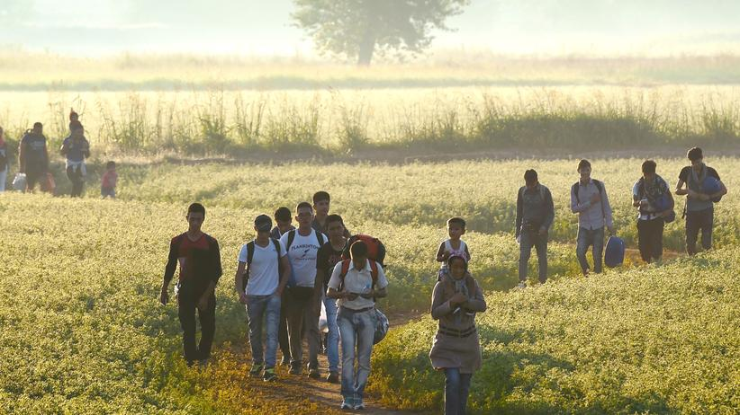 Wirtschaft, Refugees, Flüchtling, Asyl, Europa, Schlepper, Ungarn