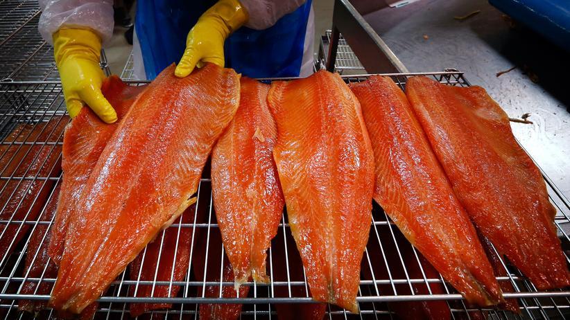 Gentechnik: Lachsfilets in einer australischen Fischfabrik
