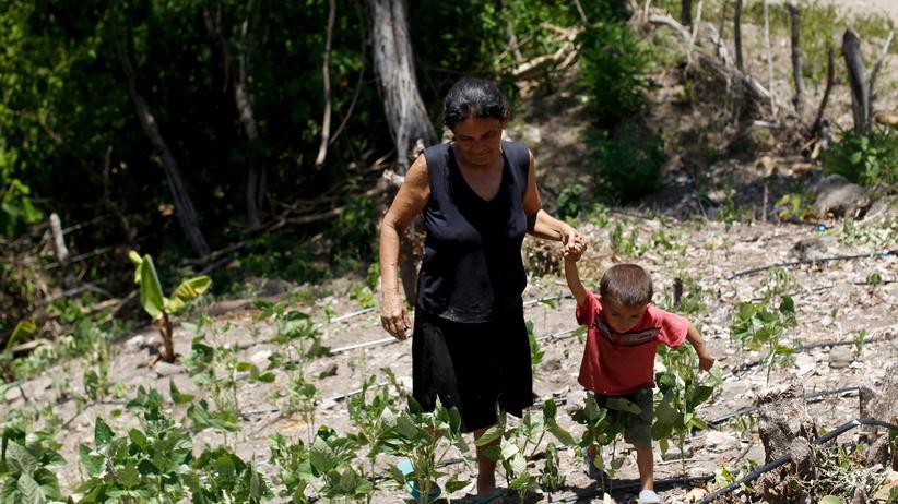 Die Menschen in Honduras kämpfen mit einer langen Dürreperiode.