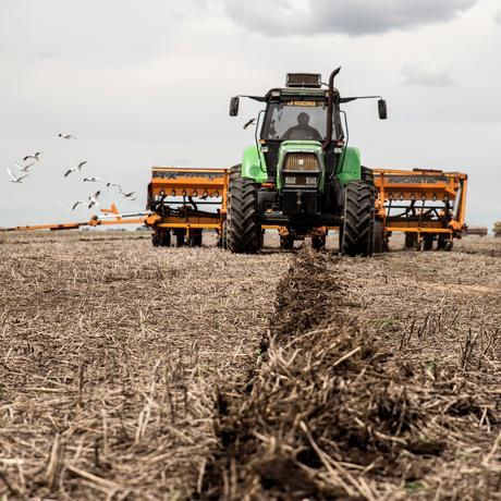 Glyphosat: Kein Schutz vor dem Pflanzengift