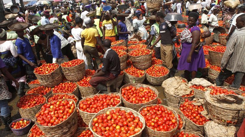 Afrika: Lokale Ware oder Import? Tomatenkörbe auf einem Markt in Lagos (Archivbild)