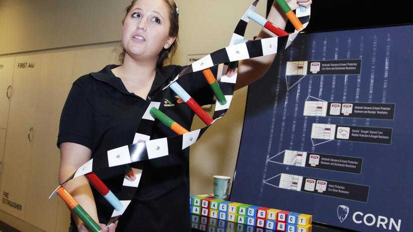 Agrarindustrie: Eine Frau präsentiert ein Modell der DNA von Monsanto-Getreide.