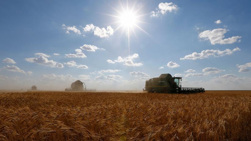 """Landwirtschaft: """"Landgrabbing"""" geht häufig zulasten von lokalen Bauern"""
