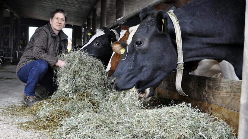 Milchbauern: Milchbäuerin Anneli Wehling bei ihren Kühen im Stall