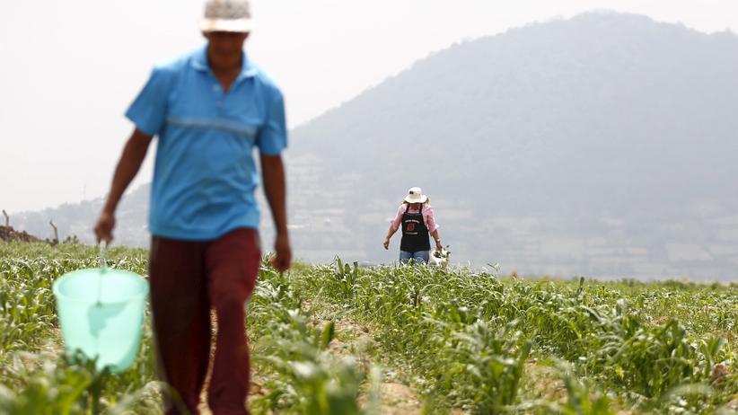 UN-Erklärung: Der Bauernaufstand