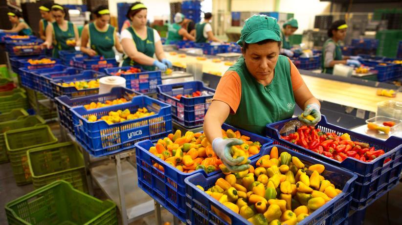 Eurostat: Eine Arbeiterin sortiert Paprikaschoten in Spanien.