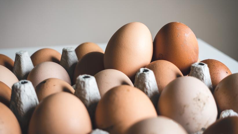 Fipronil-Skandal: Deutschland blockiert Veröffentlichungen über belastete Eier