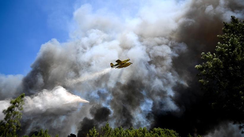Löschflugzeuge: Feuer, Feuer, Feuer!