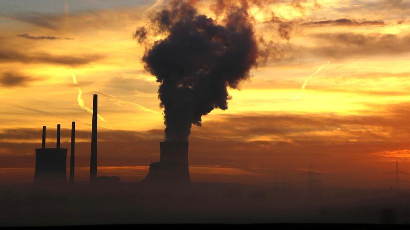 """Klimapolitik: """"Für Klimaschutz reicht das nicht"""""""