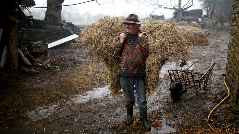 Landwirtschaft: Ein Bauernhof wie vor unserer Zeit