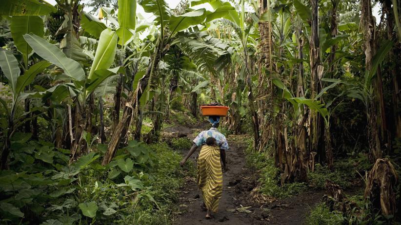 Oxfam: Selbstverpflichtung ist okay, Zwang funktioniert besser