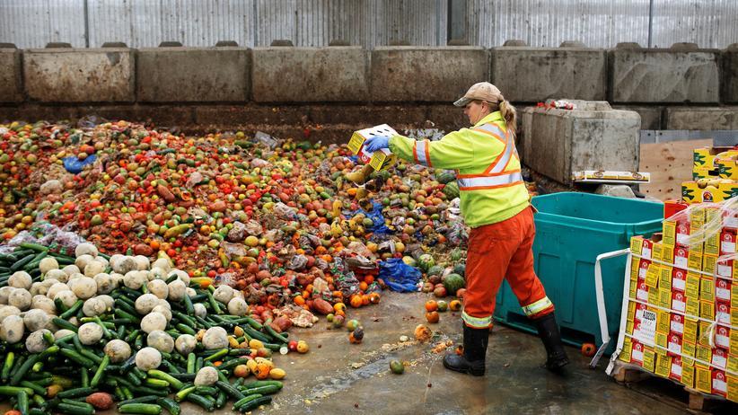 Lebensmittelverschwendung: Schätzungen zufolge werden jedes Jahr weltweit rund 1,6 Milliarden Tonnen Lebensmittel im Wert von 1,2 Billionen US-Dollar weggeschmissen.