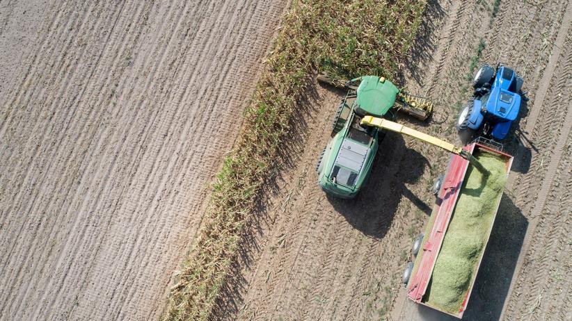 Smart Farming: Staubiger Acker: Getreideernte nach einem heißen Sommer